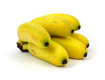 Group Mini Bananas Royalty Free Stock Image