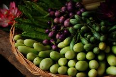 Group of mini purple eggplant,mini Green eggplant,cucumber,Winged bean. healthy Thailand vegetable for diet Stock Image