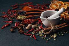 Group of mix spices with paprika Royalty Free Stock Photo