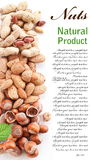 Group mixed nuts. Royalty Free Stock Photography