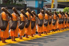 Group of monk buddhist walking on petal marigold line Royalty Free Stock Photography