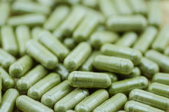 Group moringa capsule pills. Green capsule pills Stock Photography