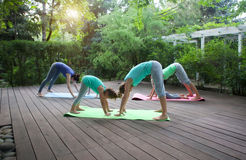 Group of mothers and daughters doing exercise practicing yoga ou Royalty Free Stock Image