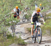 Group of mountain bike cyclists in the forest Stock Images