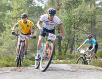 Group of mountain bike cyclists in the forestRear view of group Royalty Free Stock Images