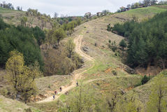 Group of mountain bikers on a steep dirt road leading to a mount Stock Image
