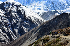 Group of mountain trekkers backpacking in Himalayas mountains. Nepal royalty free stock photos