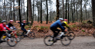 Group of mountainbikers in the woods having fun. Mountainbikers having fun in the woods Royalty Free Stock Image