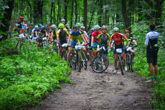 Group of MTB cyclists competing in the forest. Group of MTB cyclists on start line competing in the forest near Lviv in Ukraine Stock Images