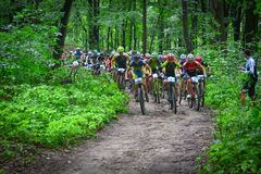 Group of MTB cyclists competing in the forest. Group of MTB cyclists on start line competing in the forest near Lviv in Ukraine Royalty Free Stock Image