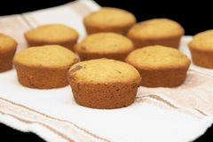 Group of muffins Royalty Free Stock Photography