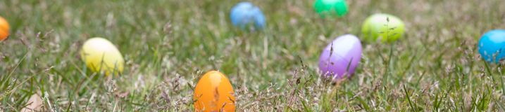 A group of Easter egg background ready to be hunted. A group of multi colored Easter eggs ready to be hunted by children royalty free stock images
