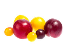 Group of multicolored plums. Group of plums isolated on the white background Royalty Free Stock Photography