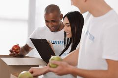 Group of multiethnic volunteers. Working together royalty free stock photography