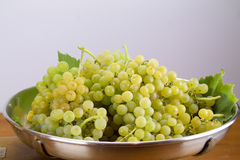 Group of muscat grapes on metal tray. Group of bunches of muscat grapes on metal tray Stock Photography