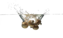 Mushroom splashing in water Stock Images