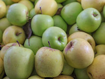 Group of natural green apples with yellow apples Royalty Free Stock Photo