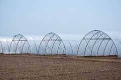 Group of new greenhouses that serve to make the vegetables grow Stock Photography