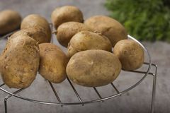 Group of new potatoes on a metallic grille. With some green herbs in background royalty free stock photography