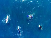 Group of novice surfers are learning to embark on wave. Aerial top view royalty free stock photo