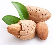 Free Group Of Almond Nuts. Royalty Free Stock Image - 19046266
