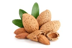 Free Group Of Almond Nuts With Leaves Isolated On White Background Royalty Free Stock Images - 107962319