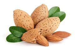 Free Group Of Almond Nuts With Leaves Isolated On White Background Stock Photos - 108157313