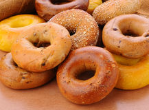 Group Of Assorted Bagels Stock Image