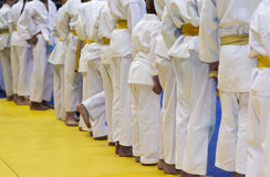 Free Group Of Children In Kimono Standing On Tatami On Martial Arts Training Seminar Royalty Free Stock Image - 73697686