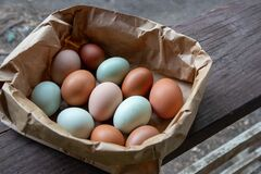 Free Group Of Colorful Farm Fresh Eggs In A Brown Paper Bag Stock Image - 197270761