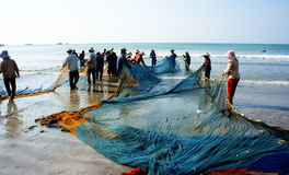 Free Group Of Fisherman Pull Fish Net Stock Photography - 38093492