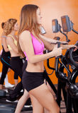 Group Of Four People In The Gym Royalty Free Stock Photo