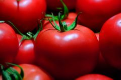 Free Group Of Fresh Red Tomatoes, Closeup Royalty Free Stock Photo - 103751105