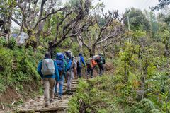 Free Group Of Hikers Walking Up By The Trail At The Mountains Royalty Free Stock Images - 160287509
