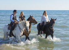 Free Group Of Horse Riders Royalty Free Stock Images - 79615739