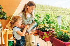 Free Group Of Two Children Watering Flowers On Balcony Royalty Free Stock Photo - 155366945