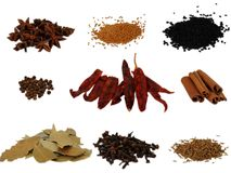 Group Of Various Spices Royalty Free Stock Photo