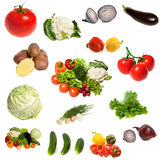 Group Of Vegetables Isolated Stock Photography