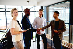 Free Group Of Young Executives Making Introductions. Royalty Free Stock Photos - 55763848