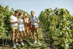 Free Group Of Young People On The Vineyard Stock Images - 162766054
