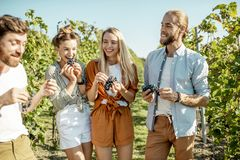 Free Group Of Young People On The Vineyard Stock Images - 162766064