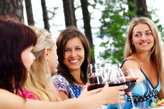 Free Group Of Young Womens Drinking Wine Stock Photo - 15998830