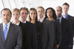 Group of office staff lined up. Facing camera Stock Image