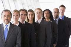 Group of office staff lined up. Facing camera Stock Photos