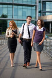 Group of office walk Stock Image