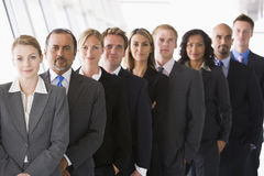 Group of office workers lined up. Facing camera Royalty Free Stock Image