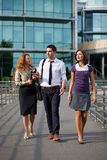 Group of office workers outdoor Stock Images