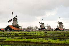 Group of old windmills ,Zaan Schan, Netherlands Royalty Free Stock Images