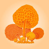 Group of orange fantastic mushrooms. Orange cartoon fungus. Hand Royalty Free Stock Image