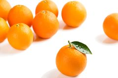 Some of orange fruits. Close up. Group of orange fruits in the background blurry and one orange with green leaf in the foreground isolated on white background Royalty Free Stock Photo